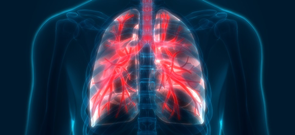 Clinical Trial Uses Immunotherapy to Treat Mesothelioma